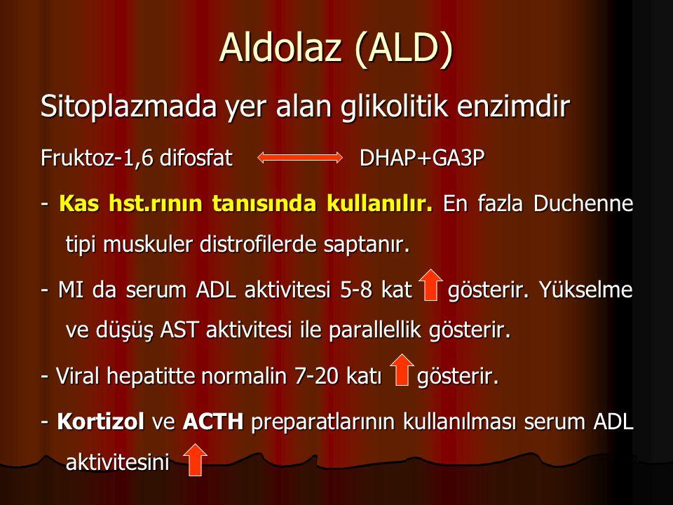 Aldolaz (ALD) Sitoplazmada yer alan glikolitik enzimdir Fruktoz-1,6 difosfat DHAP+GA3P - Kas hst.rının tanısında kullanılır.