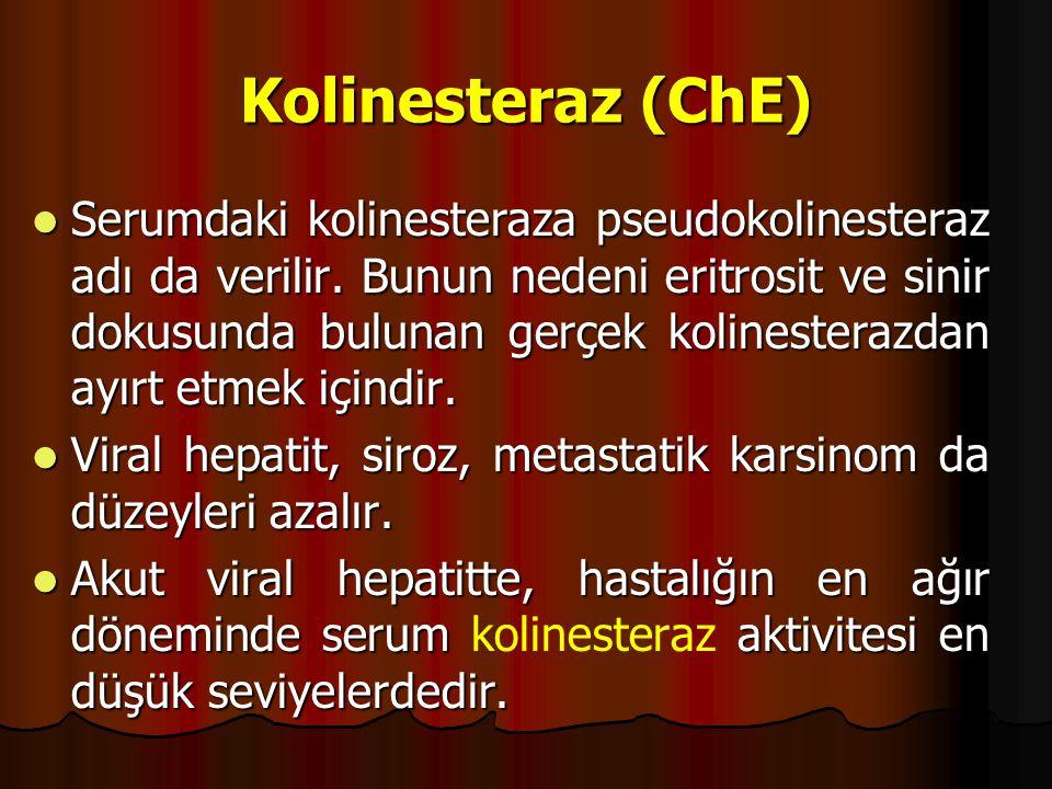 Kolinesteraz (ChE) Serumdaki kolinesteraza pseudokolinesteraz adı da verilir.