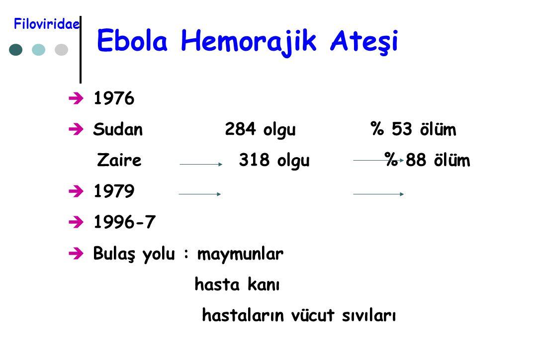 Ebola Hemorajik Ateşi  1976  Sudan 284 olgu % 53 ölüm Zaire 318 olgu % 88 ölüm  1979  1996-7  Bulaş yolu : maymunlar hasta kanı hastaların vücut