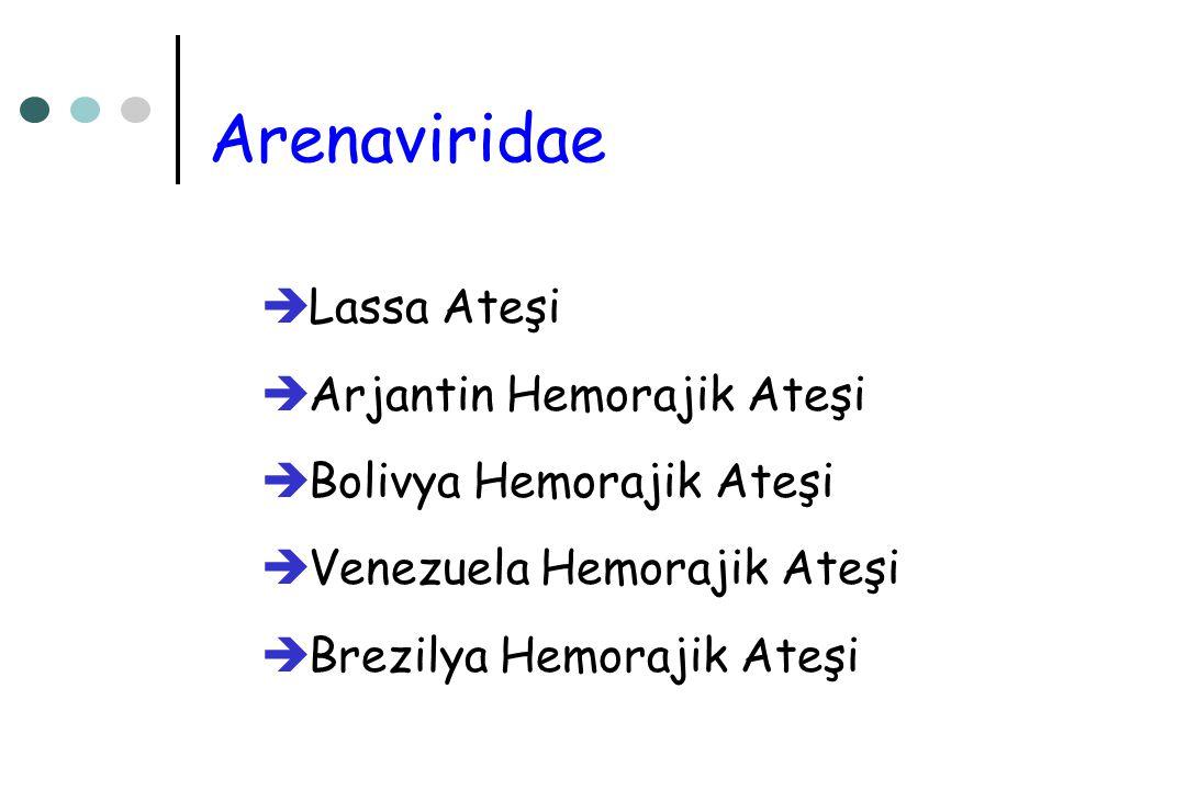 Arenaviridae  Lassa Ateşi  Arjantin Hemorajik Ateşi  Bolivya Hemorajik Ateşi  Venezuela Hemorajik Ateşi  Brezilya Hemorajik Ateşi