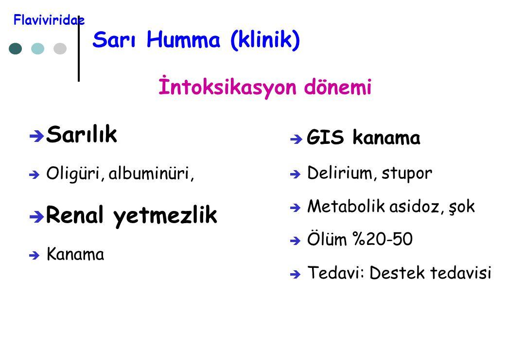 Sarı Humma (klinik)  Sarılık  Oligüri, albuminüri,  Renal yetmezlik  Kanama  GIS kanama  Delirium, stupor  Metabolik asidoz, şok  Ölüm %20-50