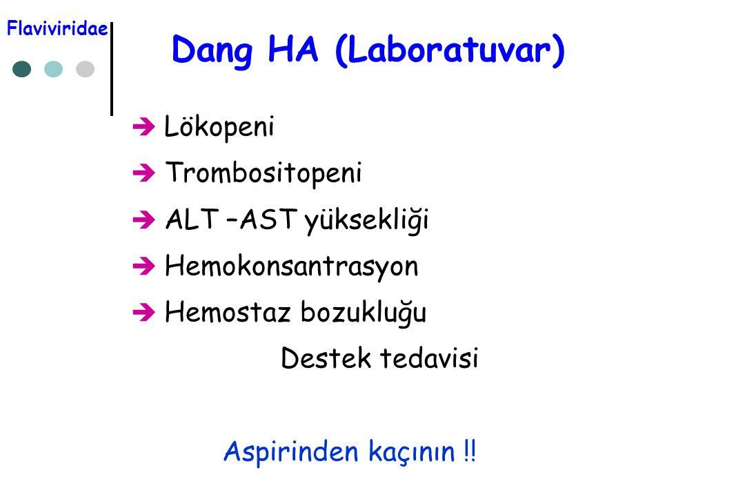 Dang HA (Laboratuvar)  Lökopeni  Trombositopeni  ALT –AST yüksekliği  Hemokonsantrasyon  Hemostaz bozukluğu Destek tedavisi Aspirinden kaçının !!