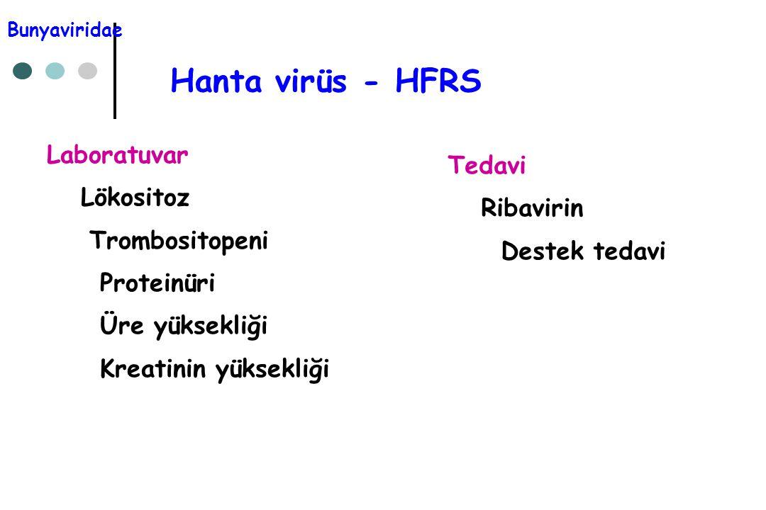 Hanta virüs - HFRS Laboratuvar Lökositoz Trombositopeni Proteinüri Üre yüksekliği Kreatinin yüksekliği Tedavi Ribavirin Destek tedavi Bunyaviridae