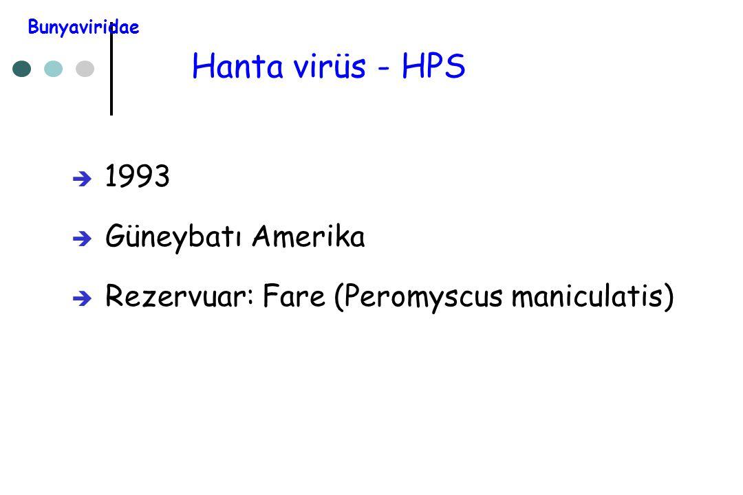 Hanta virüs - HPS  1993  Güneybatı Amerika  Rezervuar: Fare (Peromyscus maniculatis) Bunyaviridae