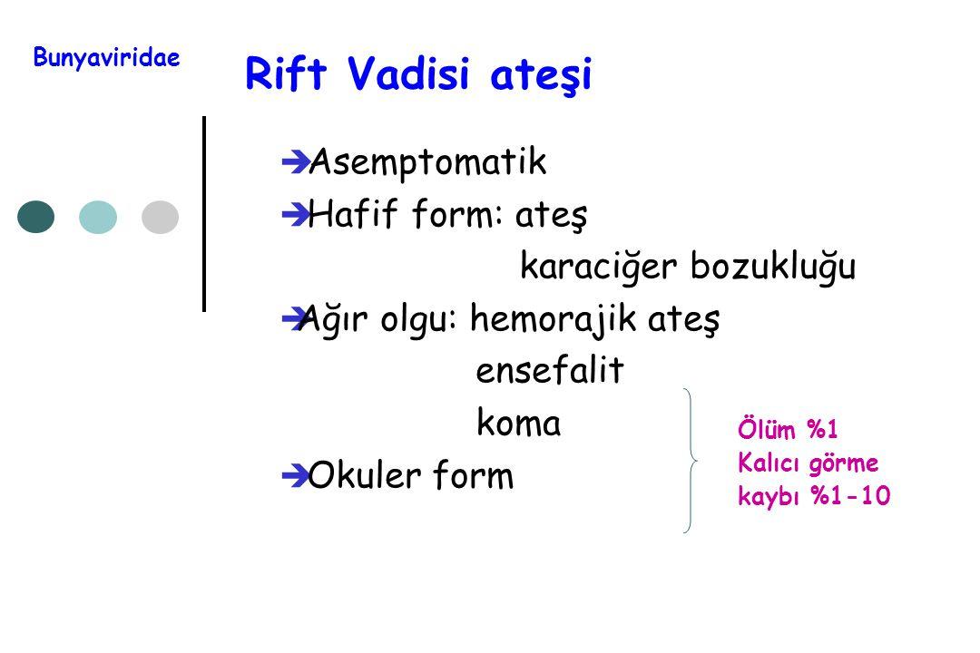 Rift Vadisi ateşi  Asemptomatik  Hafif form: ateş karaciğer bozukluğu  Ağır olgu: hemorajik ateş ensefalit koma  Okuler form Bunyaviridae Ölüm %1