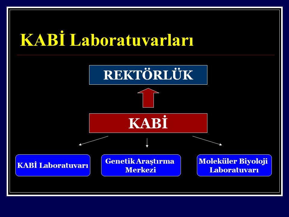 KABİ Laboratuvarları REKTÖRLÜK KABİ KABİ Laboratuvarı Genetik Araştırma Merkezi Moleküler Biyoloji Laboratuvarı