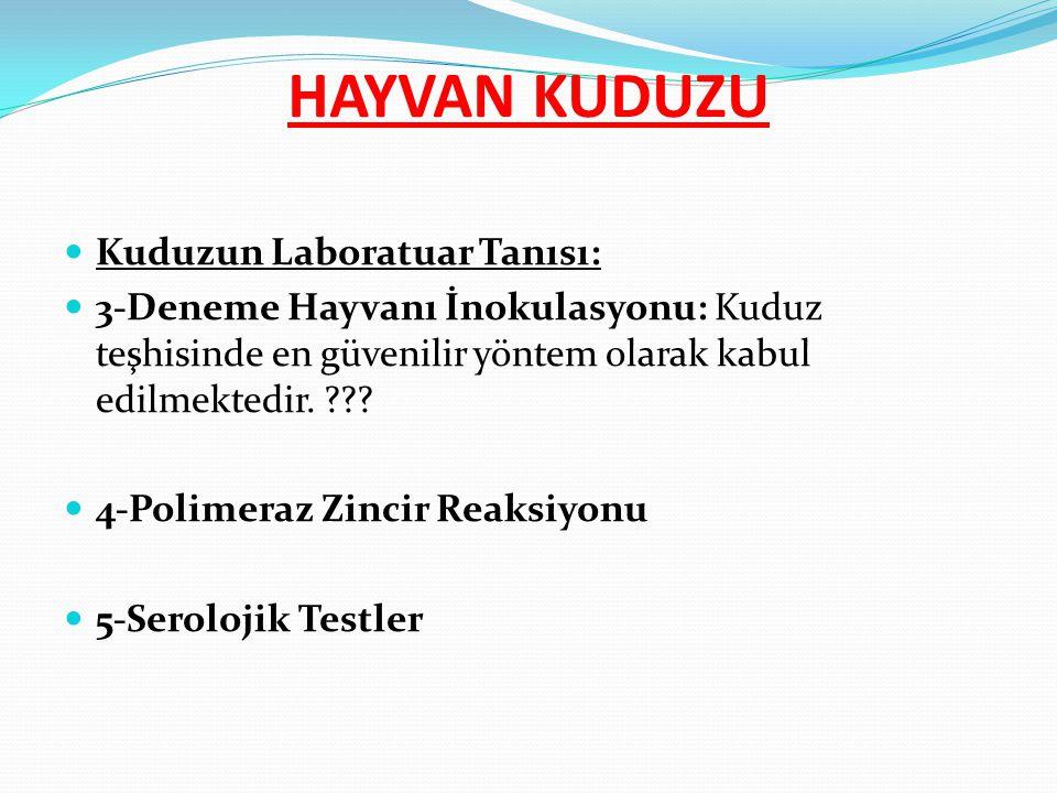 Kuduzun Laboratuar Tanısı: 3-Deneme Hayvanı İnokulasyonu: Kuduz teşhisinde en güvenilir yöntem olarak kabul edilmektedir. ??? 4-Polimeraz Zincir Reaks