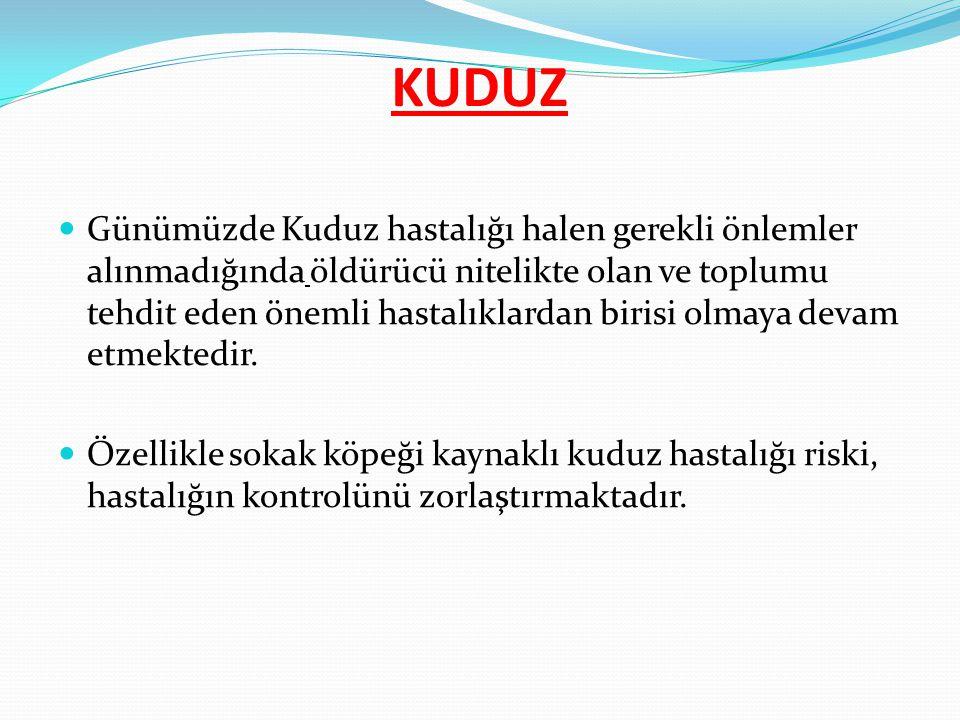 Ankara Merkezde; Ankara EAH Atatürk EAH Keçiören EAH Sincan DH Gölbaşı DH Perifer İlçelerimizde; Evren İlçesi dışındaki diğer perifer ilçelerimizde yer alan İlçe Hastanelerimiz İlimizde Yer Alan Kuduz Aşı Merkezleri: