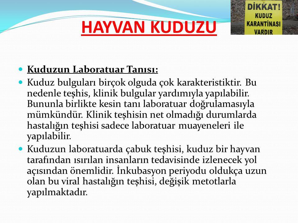 Kuduzun Laboratuar Tanısı: Kuduz hastalığının laboratuar teşhisinde ülkemizde genellikle Dünya Sağlık Örgütünün de kabul ettiği bazı metodlardan yararlanılmaktadır.