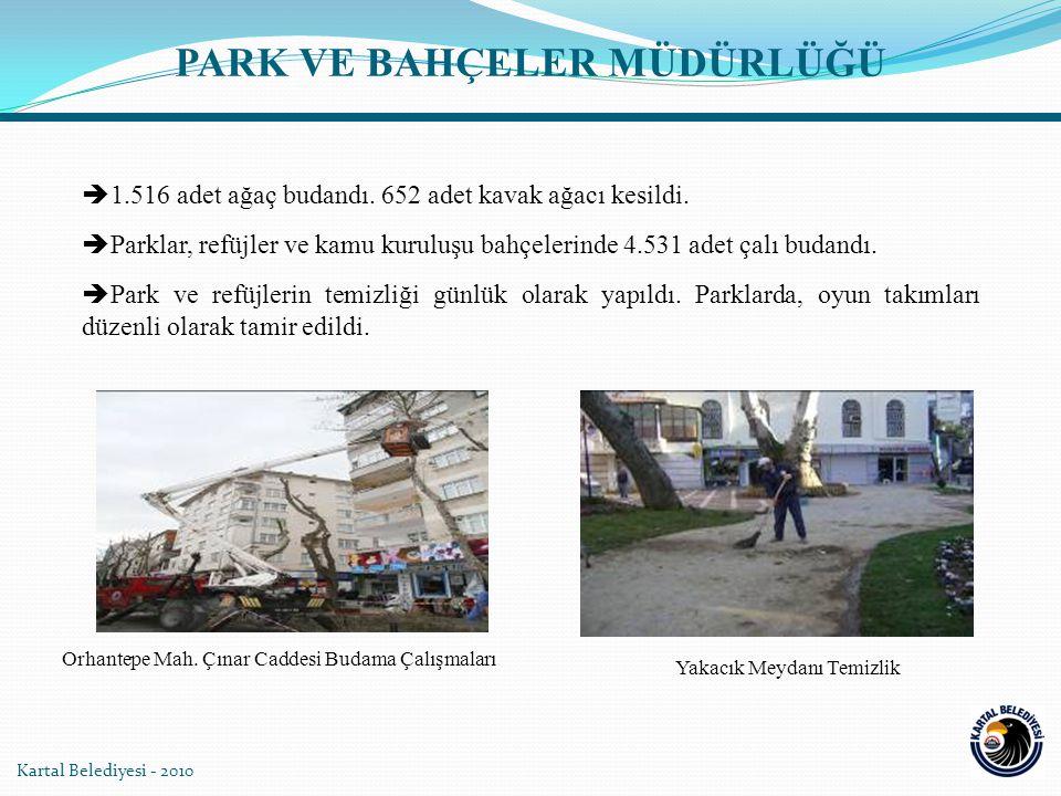 Kartal Belediyesi - 2010  1.516 adet ağaç budandı.
