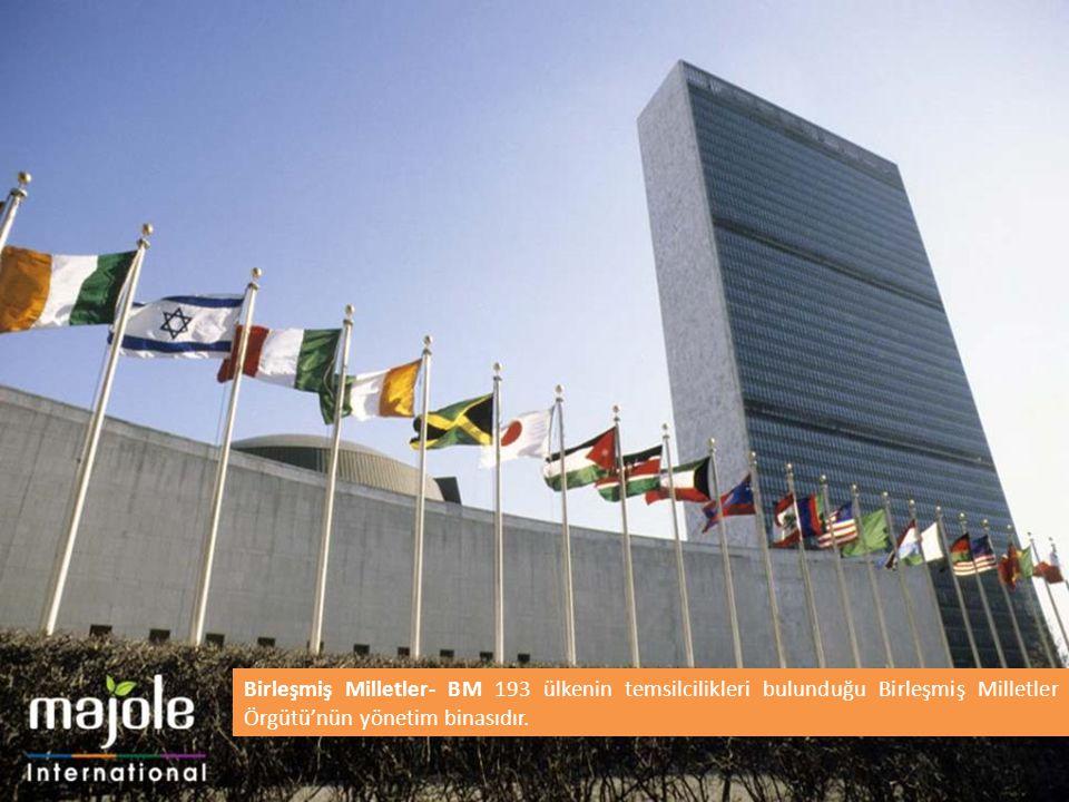 Birleşmiş Milletler Eğitim Turu