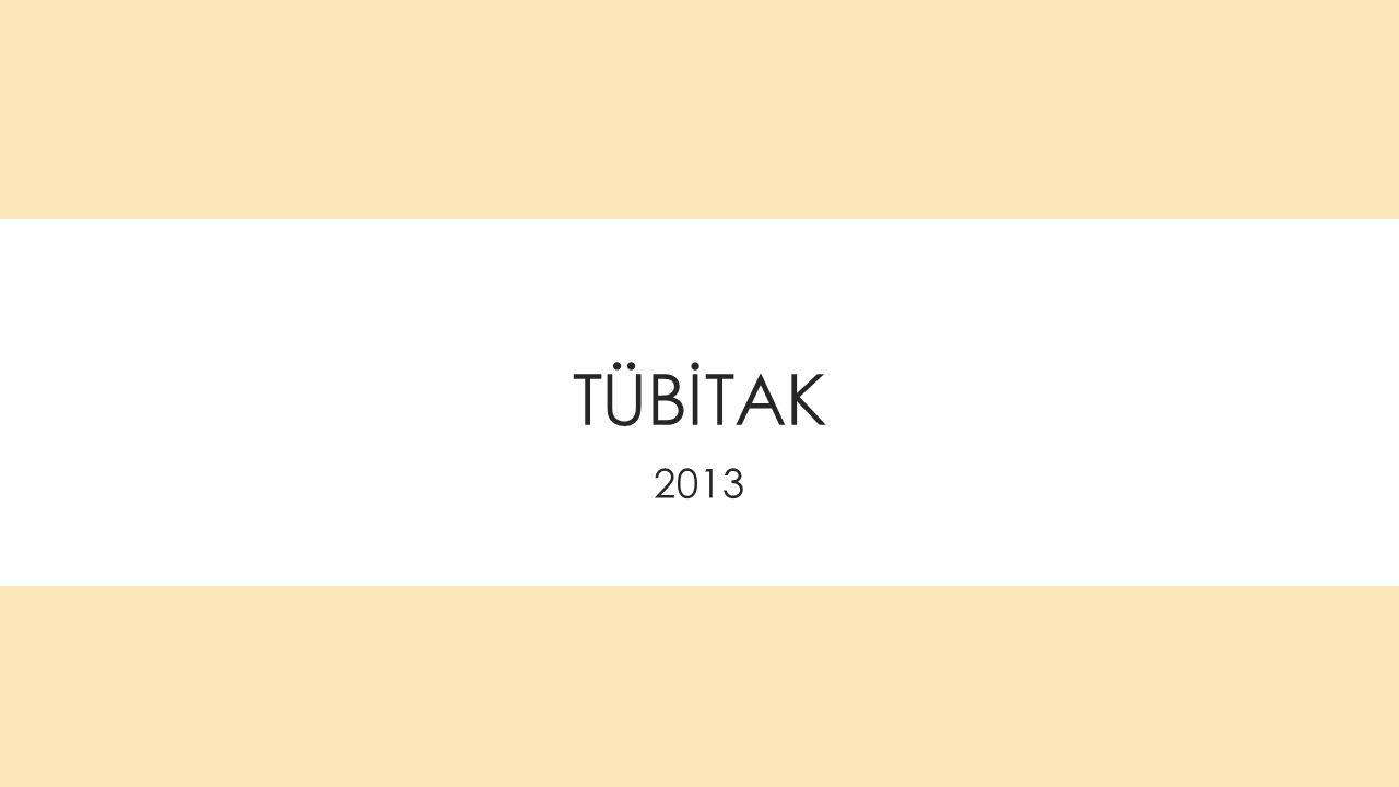 TÜBİTAK 2013