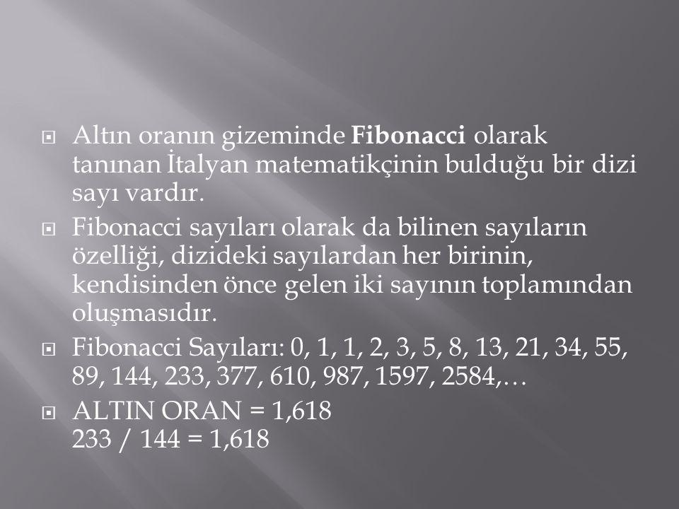  Altın oranın gizeminde Fibonacci olarak tanınan İtalyan matematikçinin bulduğu bir dizi sayı vardır.  Fibonacci sayıları olarak da bilinen sayıları