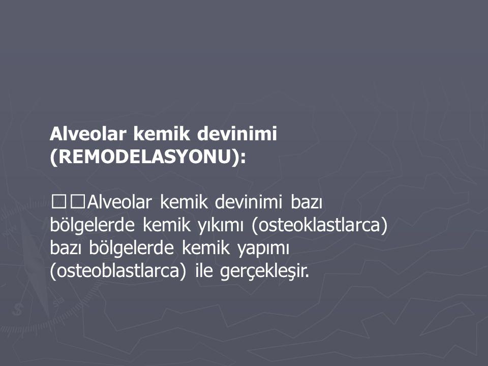 Alveolar kemik devinimi (REMODELASYONU): Alveolar kemik devinimi bazı bölgelerde kemik yıkımı (osteoklastlarca) bazı bölgelerde kemik yapımı (osteobla