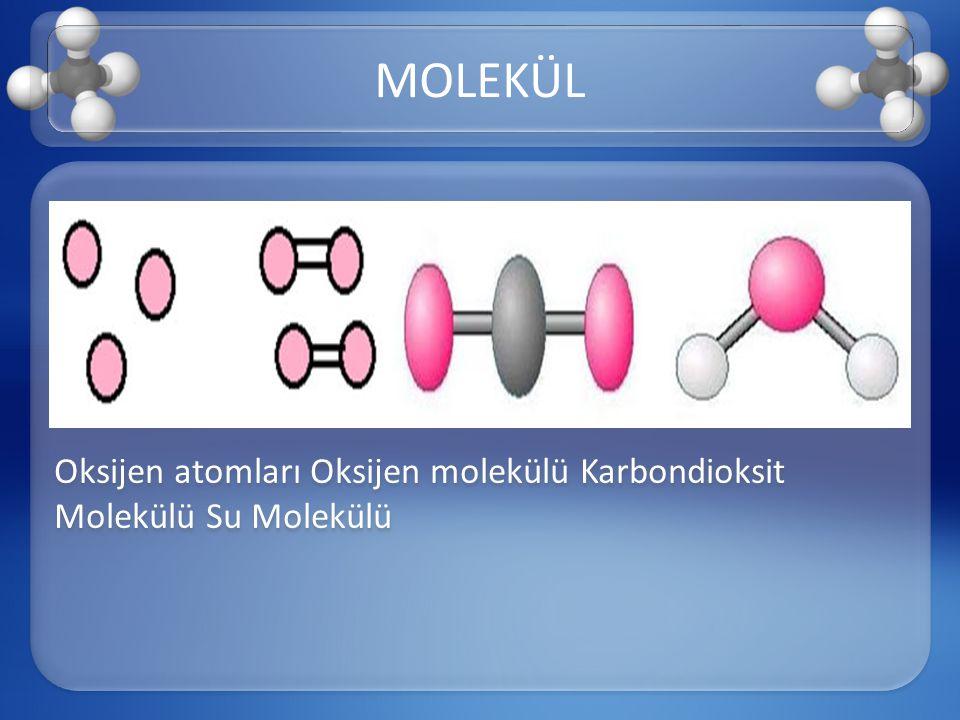 Oksijen atomları Oksijen molekülü Karbondioksit Molekülü Su Molekülü MOLEKÜL