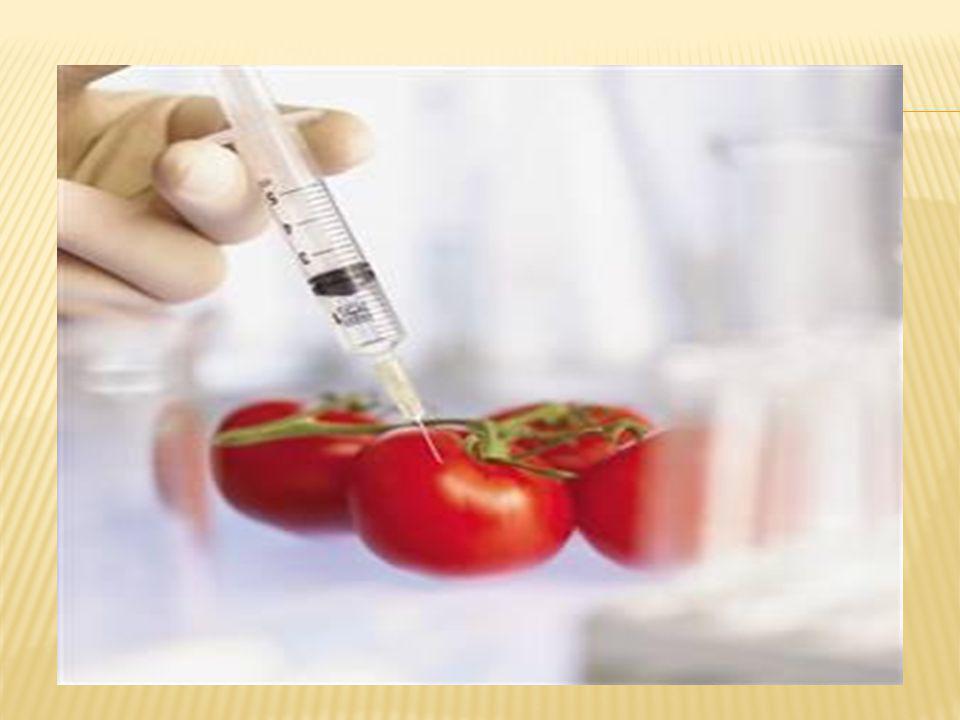  Genetik mühendislik ürünlerin besleyiciliğini artırır.
