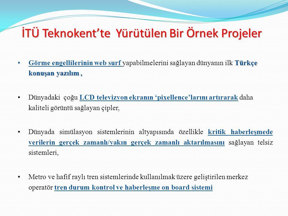 Türkçe konuşan yazılım, Görme engellilerinin web surf yapabilmelerini sağlayan dünyanın ilk Türkçe konuşan yazılım, Dünyadaki çoğu LCD televizyon ekra