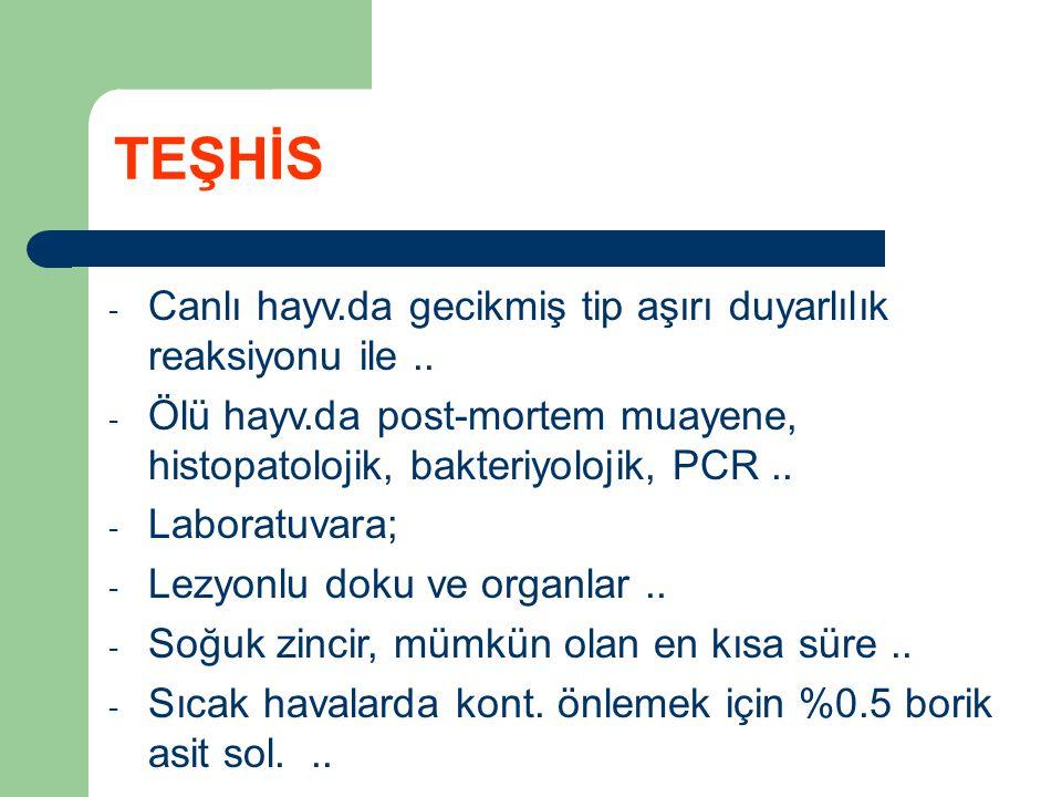 - Aseptik kaplar (çevresel mikobakteriler!)..- Laboratuvarda;..