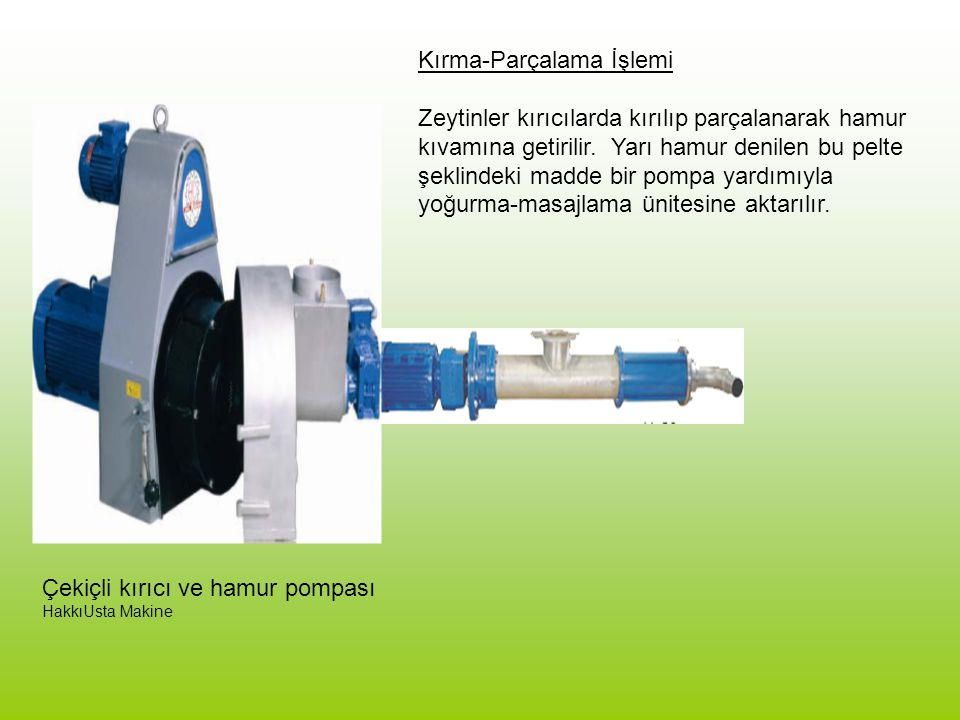 ALIŞTIRMA VE PROBLEM TANIMI 1.Türkiye yerli zeytin çeşitlerinden yağ üretiminde kullanılabilecek en uygun 5 çeşidi belirleyin.