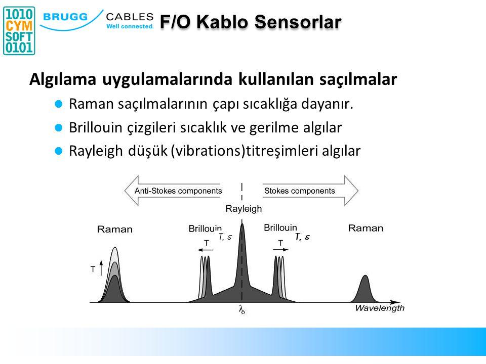 Sorgulayıcı tarafından tespit edilen Baskı izi Backscatter light caused by compression 1 metre boyutlu ışık darbeleri fiber içinde hareket eder.