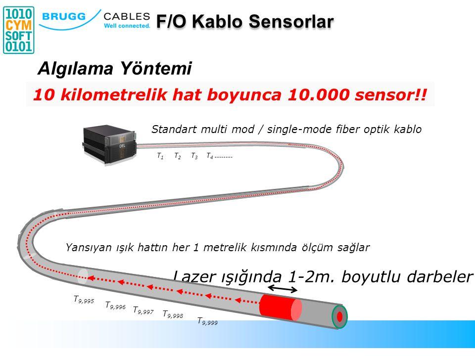 Standart multi mod / single-mode fiber optik kablo Lazer ışığında 1-2m. boyutlu darbeler Yansıyan ışık hattın her 1 metrelik kısmında ölçüm sağlar T 9