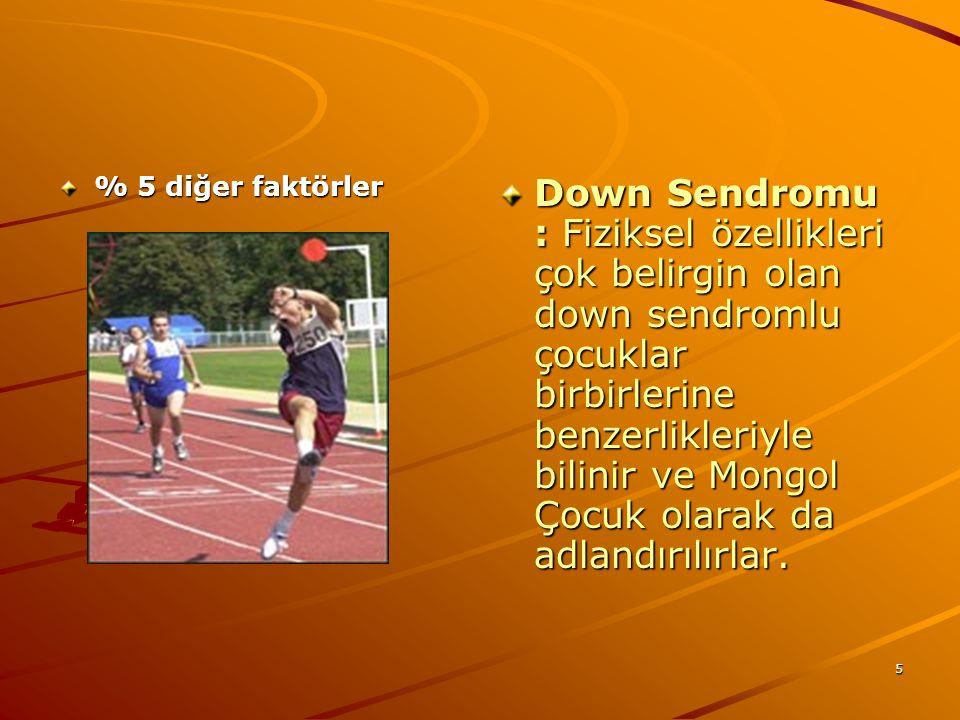 5 % 5 diğer faktörler Down Sendromu : Fiziksel özellikleri çok belirgin olan down sendromlu çocuklar birbirlerine benzerlikleriyle bilinir ve Mongol Ç