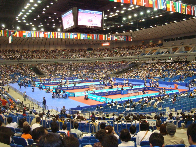 Büyükler Takım ve Ferdi Avrupa Şampiyonaları; Avrupa Şampiyonaları Federasyonumuz 2010 yılında İstanbul'da düzenlediği Yıldızlar ve Gençler Avrupa Şampiyonasını başarılı bir şekilde sonuçlandırarak organizasyon kabiliyetiyle tüm Avrupanın beğenisini kazanmıştır.