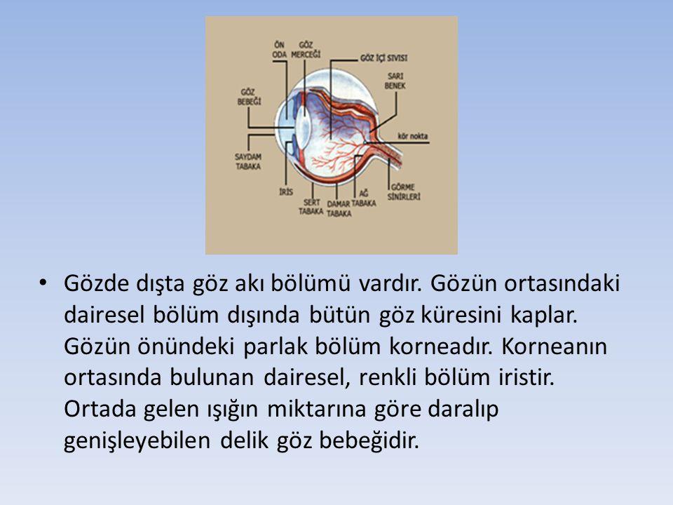 Kaynaklar 1.Ankara Üniversitesi Eczacılık Fakültesi, Yayın No: 84 Toksikoloji 2.