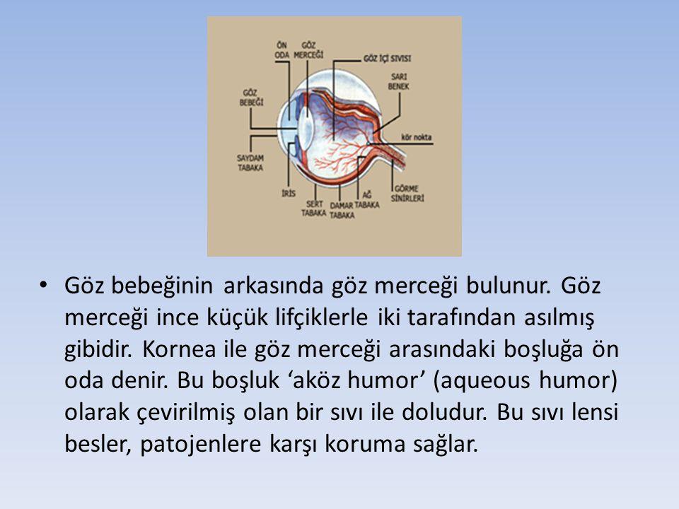 Kanda, İdrarda ve Göz sıvısında LSD, iso-LSD, nor-LSD ve 2-oxo-3- Hidroksi-LSD Tayini