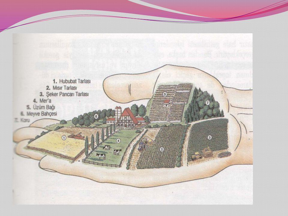 Kamulaştırma Amaçlı Arazi Toplulaştırma nedir ?