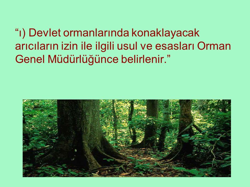 """""""ı) Devlet ormanlarında konaklayacak arıcıların izin ile ilgili usul ve esasları Orman Genel Müdürlüğünce belirlenir."""""""
