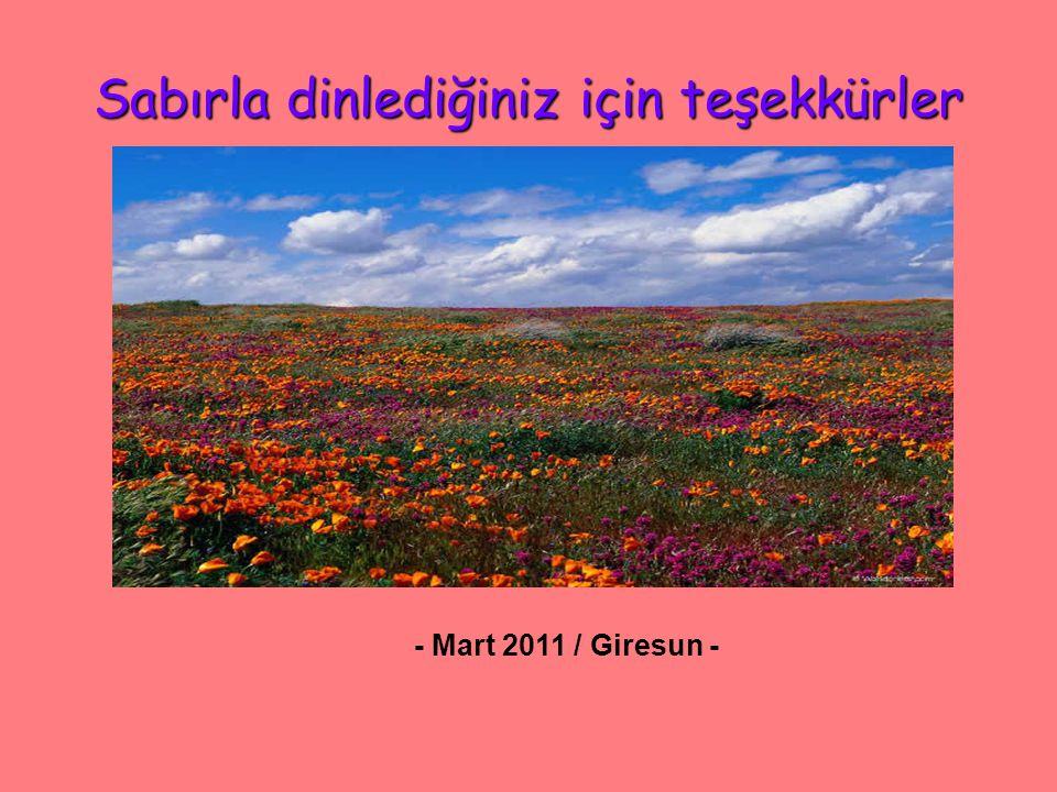 Sabırla dinlediğiniz için teşekkürler - Mart 2011 / Giresun -