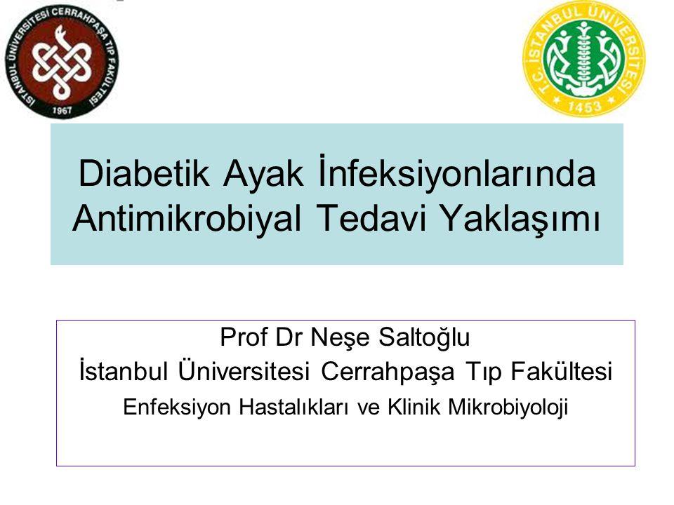 Diabetik ayak infeksiyonları sunum planı İnfeksiyonların sınıflandırılması Etkenler Antibiyotik tedavi esasları Tedavi algoritması Tedavi süreleri Sonuçlar