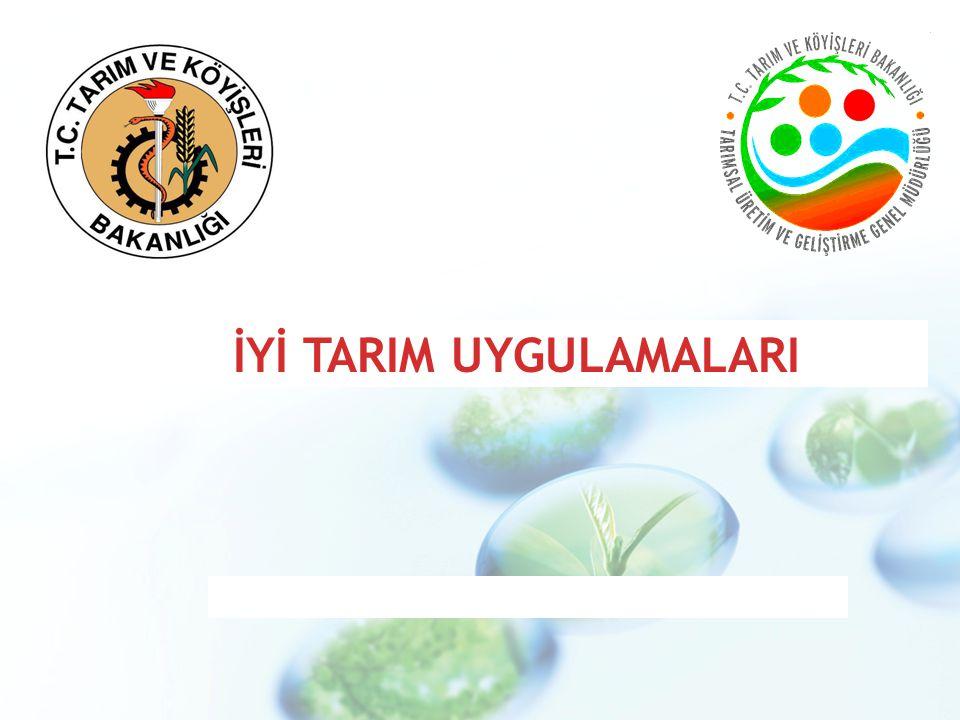 SUNUM PLANI Tarım ve Gıda Sektörünün Önemi Dünya Tarım ve Gıda Sektöründeki Gelişmeler Tarımda Yapısal Değişim ve Dönüşüm (2002–2009) Türkiye Tarım ve Gıda Sektöründeki Durum İyi Tarım Uygulamaları (İTU) Dünyada İTU Yaklaşımları (FAO, ABD ve AB) Uluslar arası Standartlar (DTÖ Engelleri) Eurepgap=Globalgap Kontrol ve Sertifikasyon Ülkemiz Mevzuatı ve Organizasyon Şeması İTU'da Swot Analizi (Politikalar, Güçlü yanlar, Zayıf yanlar, Fırsatlar, Hedefler) Sonuç (Amaç)