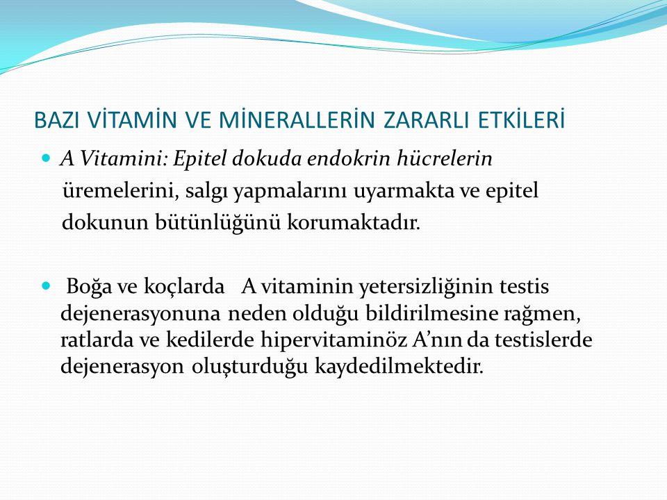 BAZI VİTAMİN VE MİNERALLERİN ZARARLI ETKİLERİ A Vitamini: Epitel dokuda endokrin hücrelerin üremelerini, salgı yapmalarını uyarmakta ve epitel dokunun