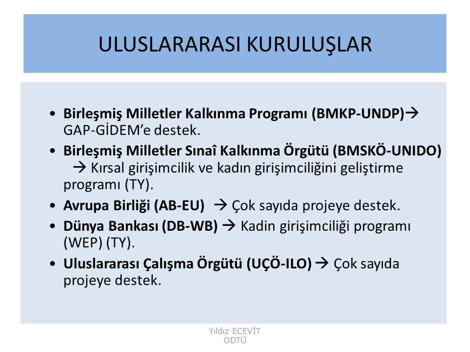 ULUSLARARASI KURULUŞLAR Birleşmiş Milletler Kalkınma Programı (BMKP-UNDP)  GAP-GİDEM'e destek.