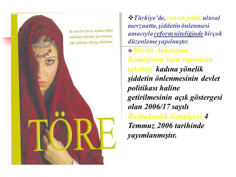  Türkiye'de, son on yılda, ulusal mevzuatta, şiddetin önlenmesi amacıyla reform niteliğinde birçok düzenleme yapılmıştır.  Meclis Araştırma Komisyon