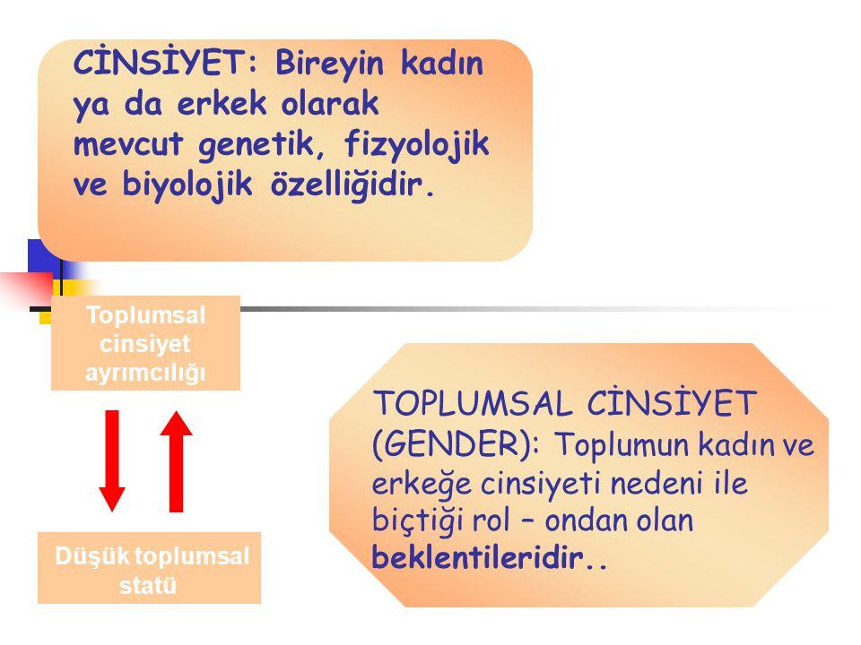 Ekonomik şiddet (Turkiye) www.ksgm.gov.tr
