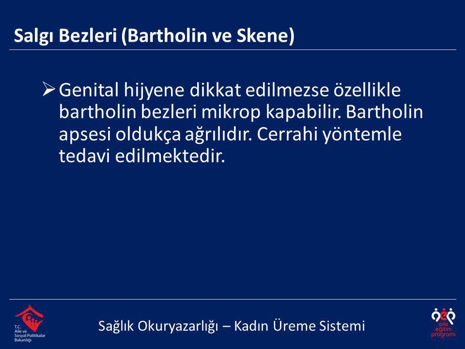 Salgı Bezleri (Bartholin ve Skene) Sağlık Okuryazarlığı – Kadın Üreme Sistemi  Genital hijyene dikkat edilmezse özellikle bartholin bezleri mikrop ka