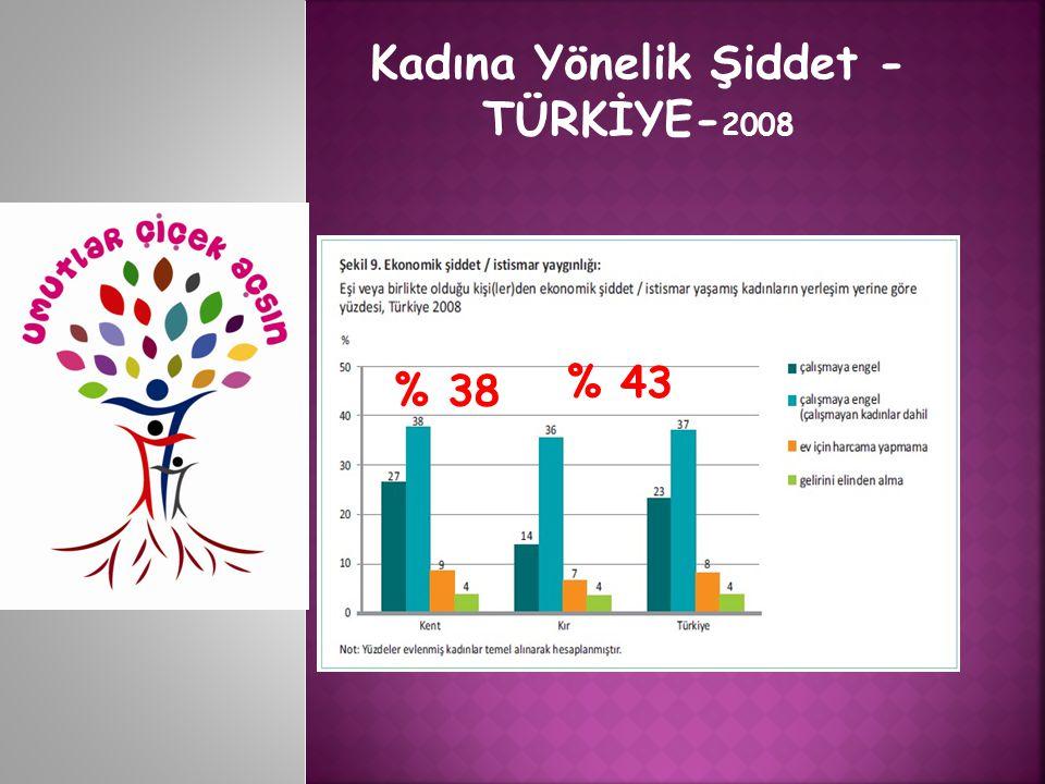 Kadına Yönelik Şiddet - TÜRKİYE- 2008 %39%15 % 44 % 38 % 43
