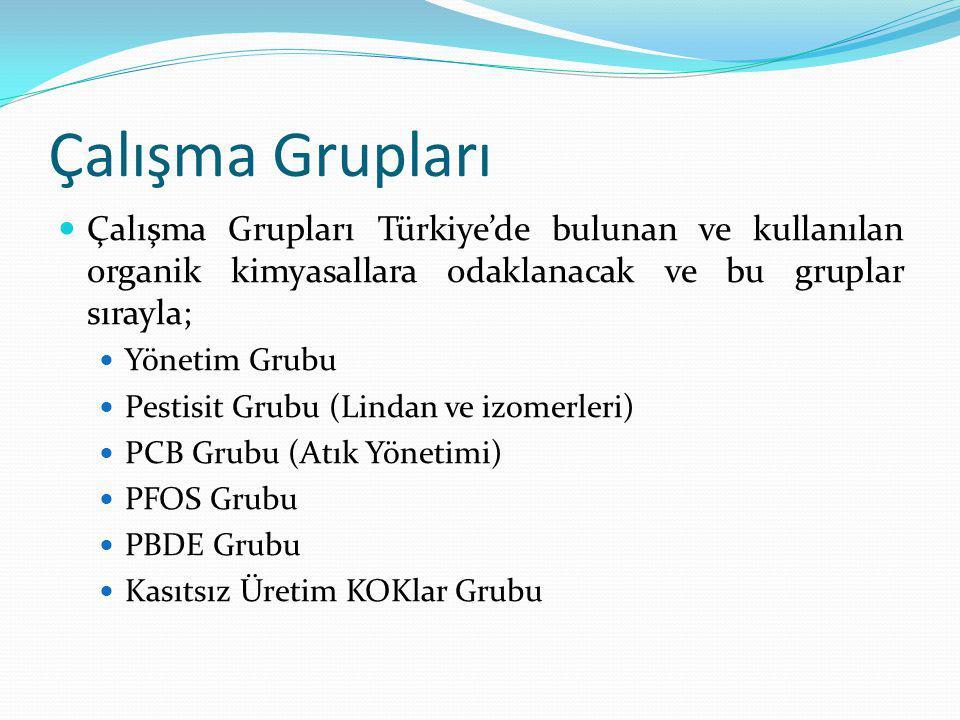 Çalışma Grupları Çalışma Grupları Türkiye'de bulunan ve kullanılan organik kimyasallara odaklanacak ve bu gruplar sırayla; Yönetim Grubu Pestisit Grub