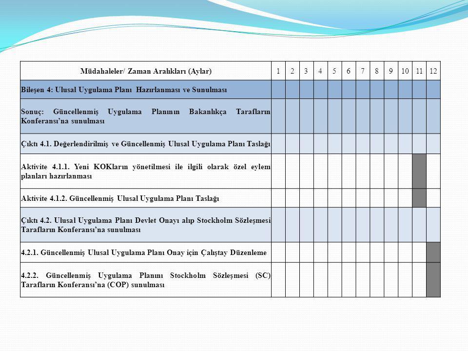 Müdahaleler/ Zaman Aralıkları (Aylar)123456789101112 Bileşen 4: Ulusal Uygulama Planı Hazırlanması ve Sunulması Sonuç: Güncellenmiş Uygulama Planının