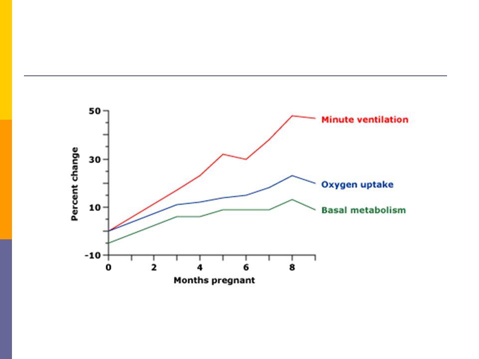 Pulmoner değişiklikler  Dinlenmede dakika ventilasyonu % 40 - 50 artar  Solunum hızı korunur, tidal hacim (TV) % 33 artar  Oksijen kullanımı % 20 – 33 artar  Ventilasyon artışı > oksijen kullanımı artışı  Hamilelik boyunca progesteron düzeyleri yükselir