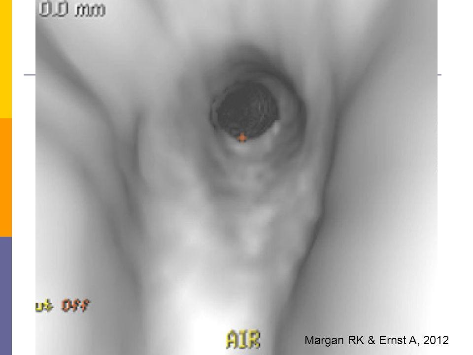 Margan RK & Ernst A, 2012