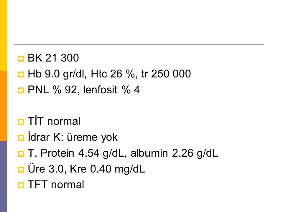  BK 21 300  Hb 9.0 gr/dl, Htc 26 %, tr 250 000  PNL % 92, lenfosit % 4  TİT normal  İdrar K: üreme yok  T. Protein 4.54 g/dL, albumin 2.26 g/dL