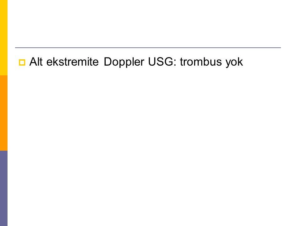  Alt ekstremite Doppler USG: trombus yok