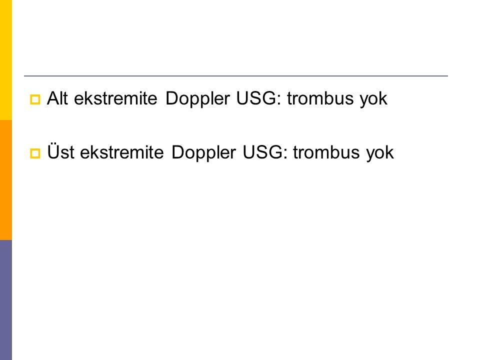  Üst ekstremite Doppler USG: trombus yok