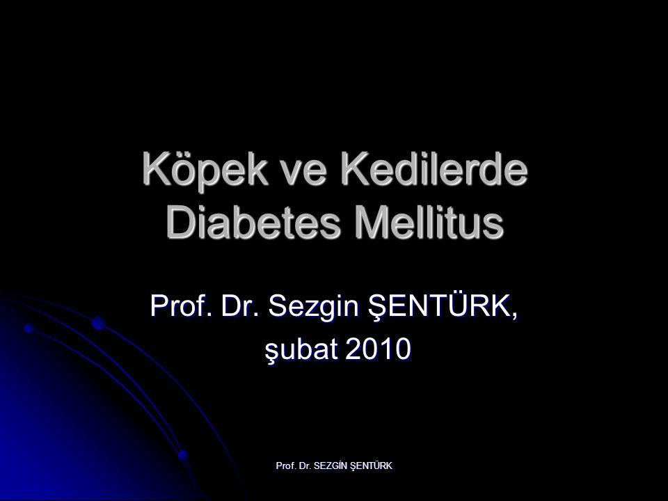Prof. Dr. SEZGİN ŞENTÜRK Köpek ve Kedilerde Diabetes Mellitus Prof. Dr. Sezgin ŞENTÜRK, şubat 2010 şubat 2010