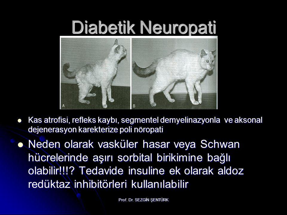 Prof. Dr. SEZGİN ŞENTÜRK Diabetik Neuropati Kas atrofisi, refleks kaybı, segmentel demyelinazyonla ve aksonal dejenerasyon karekterize poli nöropati K