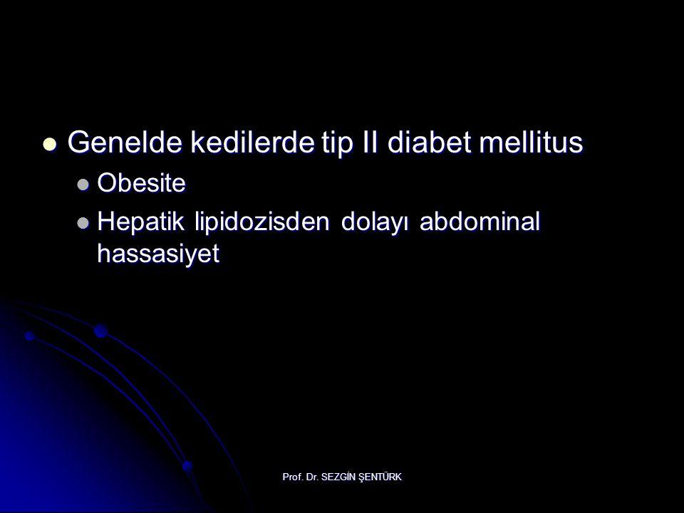 Prof. Dr. SEZGİN ŞENTÜRK Genelde kedilerde tip II diabet mellitus Genelde kedilerde tip II diabet mellitus Obesite Obesite Hepatik lipidozisden dolayı